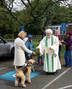 Blessing of Animals II